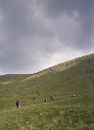 l2007_p33